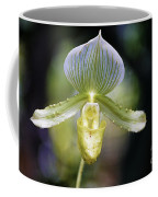 Flowers 61 Coffee Mug