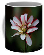 Flowers 66 Coffee Mug
