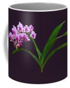 Flowers - Aerides Lawrenciae X Odorata Orchid Coffee Mug