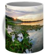 Flowers At Sunset Coffee Mug