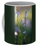 Flowers By The Pond Coffee Mug