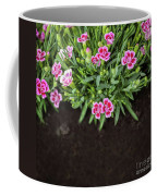 Flowers In Grass Growing From Natural Clean Soil Coffee Mug