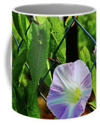 Flowers On The Fence 1 Coffee Mug