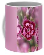 Flowers Pink Purple Decorative 4671 300x480 Coffee Mug