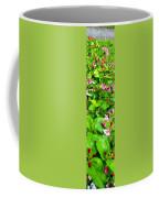 Flowery Flope Coffee Mug