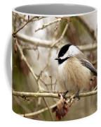 Fluffy Chickadee Coffee Mug