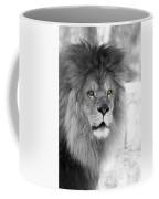 Fluffy Tango  Black And White  T O C Coffee Mug