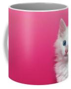 Fluffy White Kitten On Pink Coffee Mug