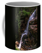Flume Gorge Waterfall Coffee Mug