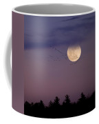 Fly By Night Square Coffee Mug