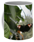 Fly Free - Black, Orange, White Butterfly Coffee Mug