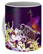Fly Housefly Insect Close Macro  Coffee Mug