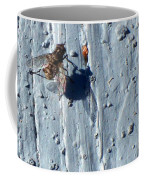 Fly On The Wall Coffee Mug