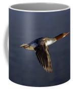 Flying Female Merganser - Odell Lake Oregon Coffee Mug