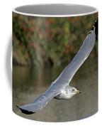 Flying Sea Gull - Eugene Oregon Coffee Mug