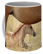 Foal And Mare In A Saskatchewan Pasture Coffee Mug