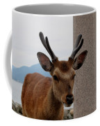Focus Deer Coffee Mug