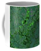 Focus Of Attention 11 Coffee Mug