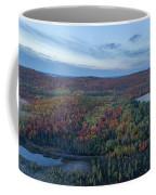 Fog And Fall Colors Coffee Mug