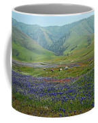 Fog And Wildflowers At Bear Mountain Coffee Mug