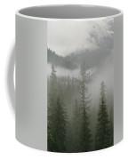 Fog Hangs In A Valley Of Evergreens Coffee Mug