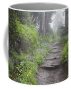 Foggy Forest Path Coffee Mug