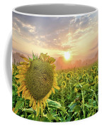 Foggy Yellow Fields 3 Coffee Mug