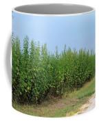 Food Of The Gods Coffee Mug