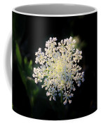 Fools Parsley  Coffee Mug