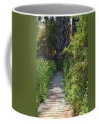 Footpath In Peters Canyon I Coffee Mug