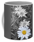 For The Love Of Daisy Coffee Mug