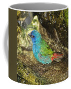 Forbes Parrot Finch Coffee Mug