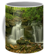 Forbes State Forest Twin Falls Coffee Mug