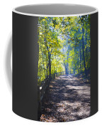 Forbidden Drive - Philadelphia Coffee Mug