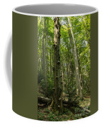 Forest 1 Coffee Mug