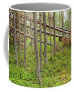 Forest After Storm - Fall Pines In Wild Forest Coffee Mug