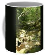 Forest Bridge Coffee Mug