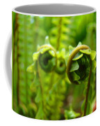 Forest Ferns Fine Art Photography Art Prints Baslee Troutman Coffee Mug