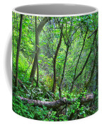 Forest In Hdr Coffee Mug