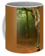 Forest Light 1 Coffee Mug