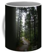 Forest Path At Grafton Notch State Park Coffee Mug