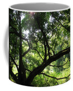 Forest Silhouette Coffee Mug