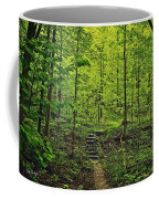 Forest Stairs Coffee Mug