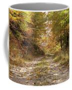 Forest Stone Path Coffee Mug