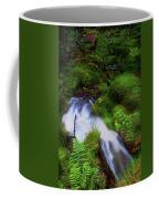 Forest Stream. Benmore Botanic Garden Coffee Mug