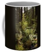 Forest Sunlight And Shadows  Coffee Mug