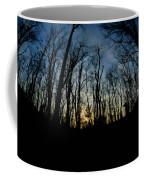 Forest Sunset Coffee Mug