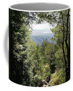 Forest View From Mt Tamalpais Coffee Mug