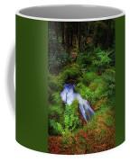 Forest  Water Stream. Benmore Botanic Garden Coffee Mug