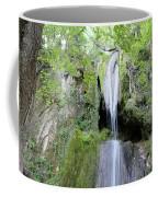 Forest With Waterfall Coffee Mug